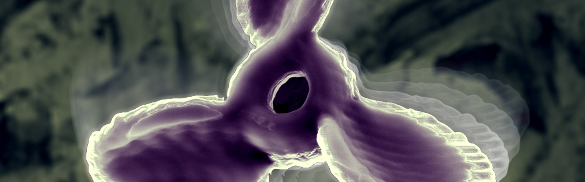 A SEM image depicting a 3-D printed self-propelled micropropeller. These micropropellers are 7 µm from tip-to-tip and swim auton