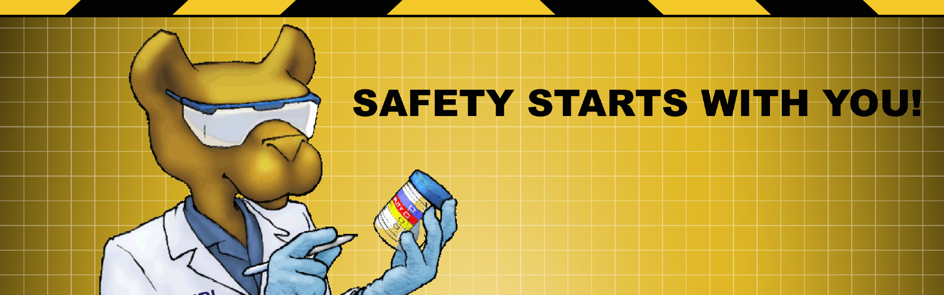 Safety starts with you